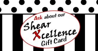 Shear Xcellence Hair Salon